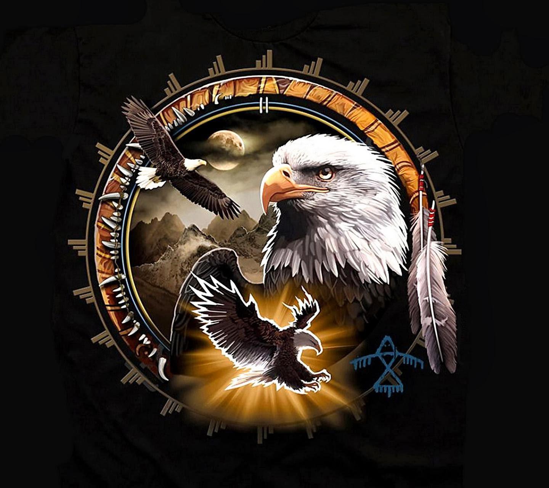 dream catcher eagle desktop wallpaper - photo #17
