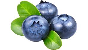 Urinary Tract Infections Blueberries