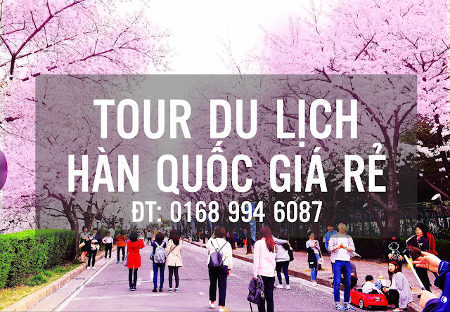 TOUR DU LỊCH HÀN QUỐC GIÁ RẺ - CHẤT LƯỢNG