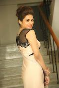 shraddha das latest glamorous photos-thumbnail-10