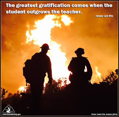 The greatest gratification comes when the student outgrows the teacher. –Jesse Lyn Sto