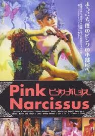 Pink Narcissus, 1971