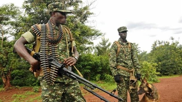 Human Rights Watch slams sexual abuse by Ugandan troops in Central African Republic (CAR)