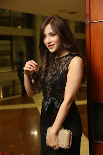 Angela Krislinzki in Transparent Black Gown at Rogue Movie Teaser Launch 1st March 2017 087.JPG