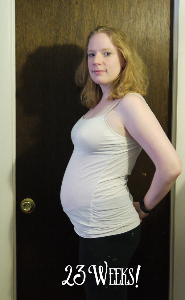 the thin line: 23 Weeks Pregnant