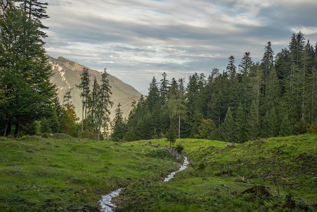 Unternberg Gipfeltour  Wandern Ruhpolding  Wanderung Chiemgau  Unternberg-Branderalm-Seehaus 12