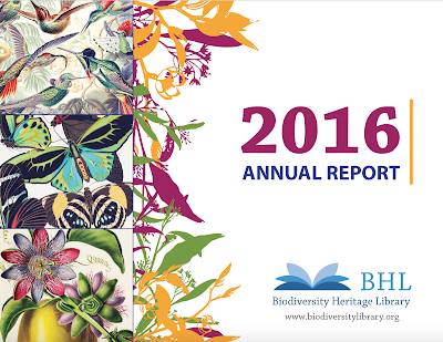 2016 BHL Annual Report