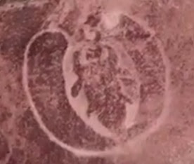 Aerial view of the Ratnagiri Petroglyph depicting the Winged Scarab