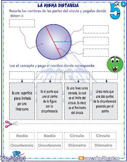 Circulo, Radio, circunferencia