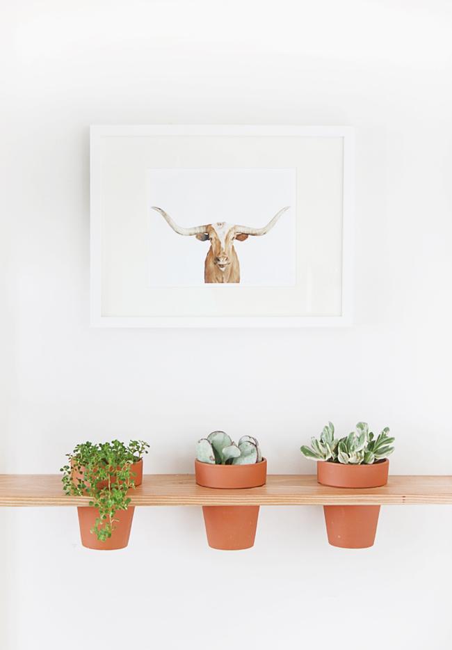 4 DIY con plantas que querrás tener en tu casa