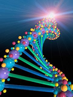 Os Genes e Nós - Raquel Pimentel