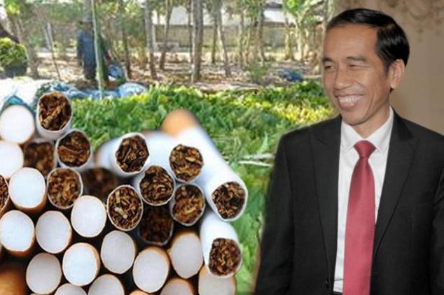 Sudah Disahkan! Pemerintah Naikkan Harga Rokok