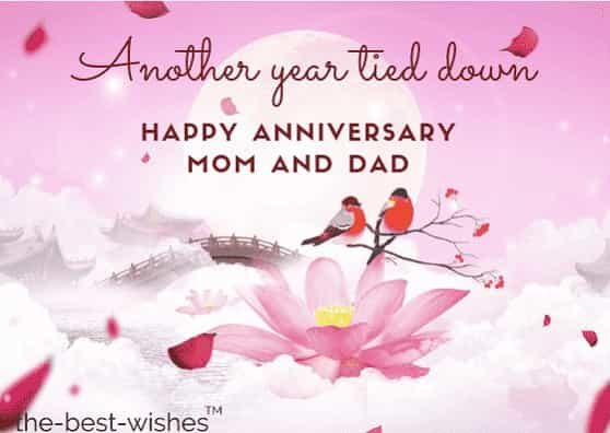 The Best Wedding Anniversary Wishes For Parents