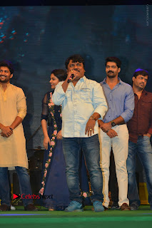 Nenu Local Audio Launch Stills  0012.JPG