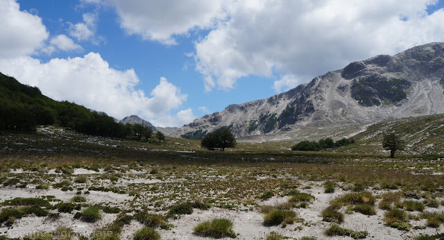 Pampa valle Ujenco, Valle cataratas, trekking, sendero, pastizales