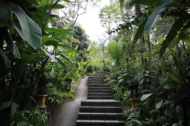 resort nella giungla a bali