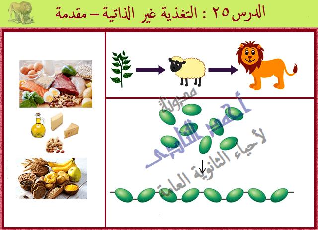 التغذية الغير ذاتية فى الكائنات الحية - مدونة أحمد النادى لأحياء الثانوية العامة