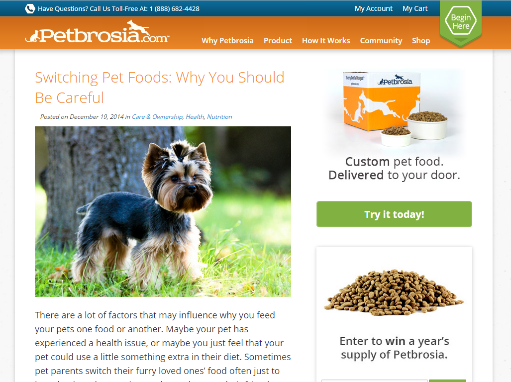 Read Success Stories and Advice for Your Pets in One Place - Our