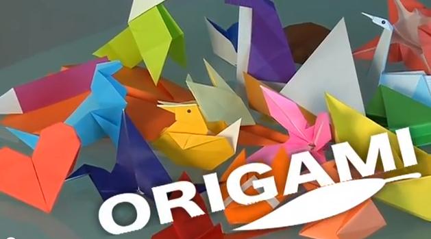 origami pour d butant. Black Bedroom Furniture Sets. Home Design Ideas