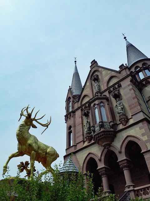 dear outside drachenburg castle on drachenfells rock