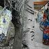 Astagfirullahalaziim, gambar perempuan dicucuk dengan 8 batang jarum ditemui dalam hutan
