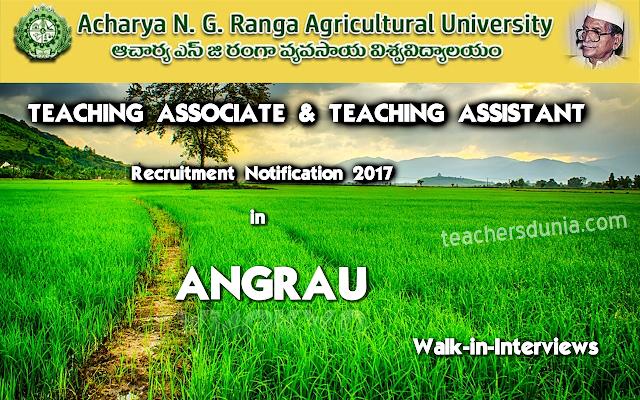 ANGRAU-Teaching-Associate-Assistant-Notification-2017