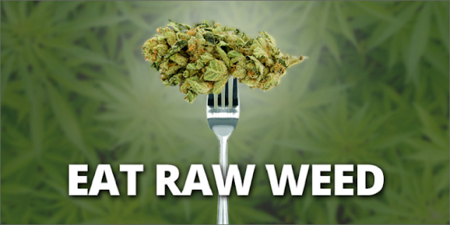 Eating Raw Weed Prevents Bowel Cancer, Fibromyalgia And Neuro-degenerative Diseases