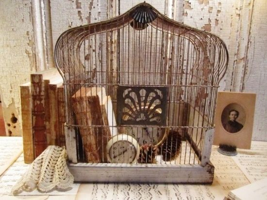 bird cage in home decor