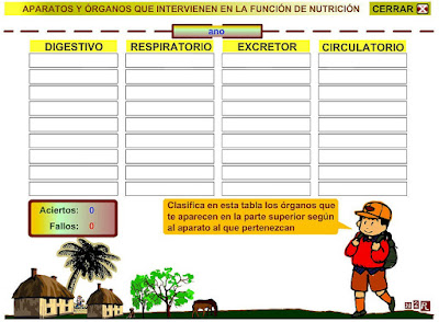 http://www.eltanquematematico.es/pizarradigital/AparatoDigestivo/actividades/actividades3_p.html
