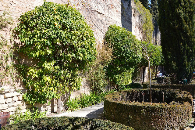 Roślinność na Alhambrze