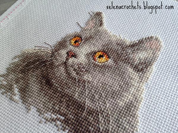 британский кот вышивка алиса 0-134