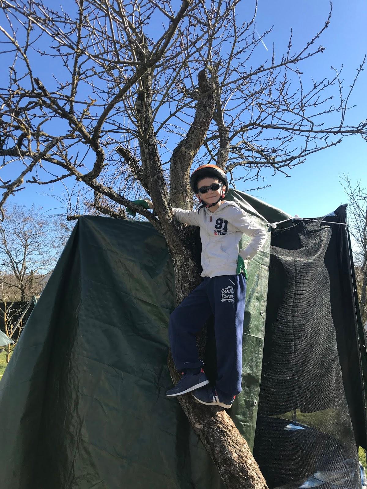 protections pour monter dans les arbres