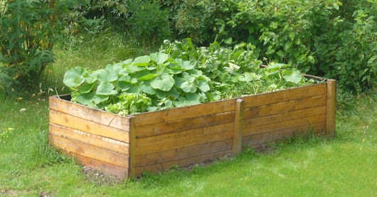 How to build a raised bed - Pt. 1: what material to use