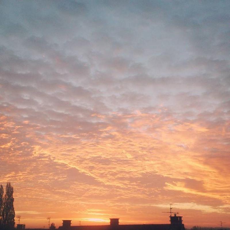 ciel rose