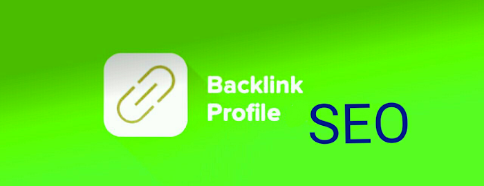 The Ultimate Guide on Profile Backlinks for SEO