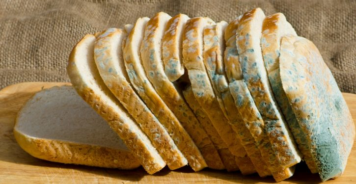 """What Happens In Your Body When You Eat The """"Clean"""" Part Of A Moldy Bread"""