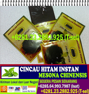 Grass Jelly Pregnancy, Jual Bubuk Grass Jelly, Jual Grass Jelly, Jual Grass Jelly Taiwan, Jual Grass Jelly Bubuk, Harga Grass Jelly, Agar Agar Instan, Pembekal Cincau, Pembekal Air Cincau, Pembekal Daun Cincau, Xian Cao Jelly, Xian Cao Tea, Xian Cao, Gulaman