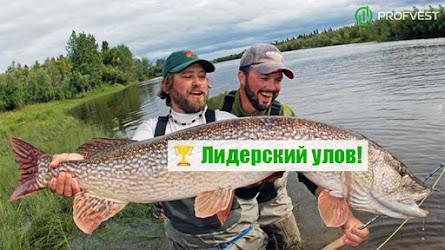 Лидеры: Веселые рыбаки – до 55% чистой прибыли за 35 дней!