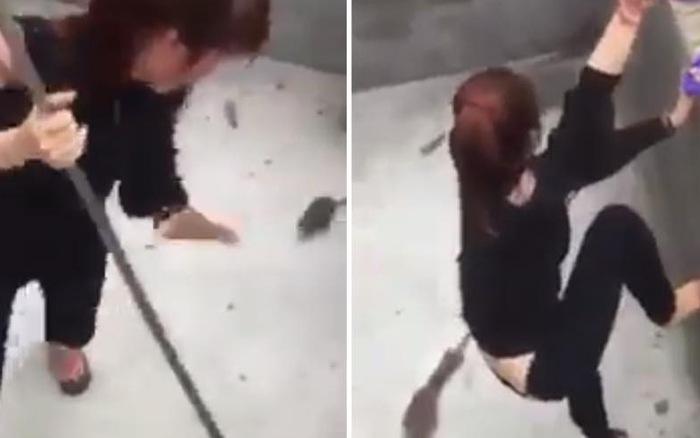 Clip thiếu nữ bị chuột cống bắt nạt nhận nhiều thương cảm của cư dân mạng