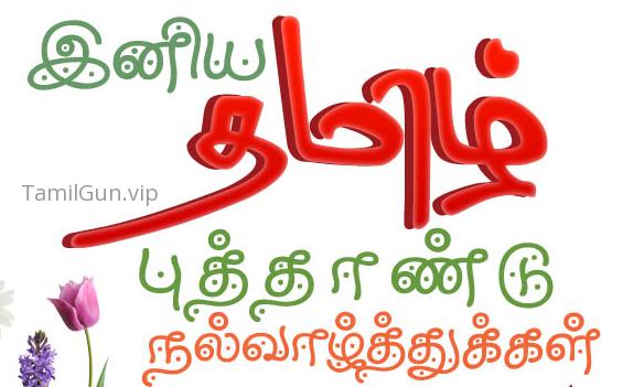 Tamil Gun Full Site Back In Shortly | Tamil Gun