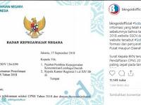 Pendaftaran CPNS 2018 Dimulai Tanggal 26 September 2018
