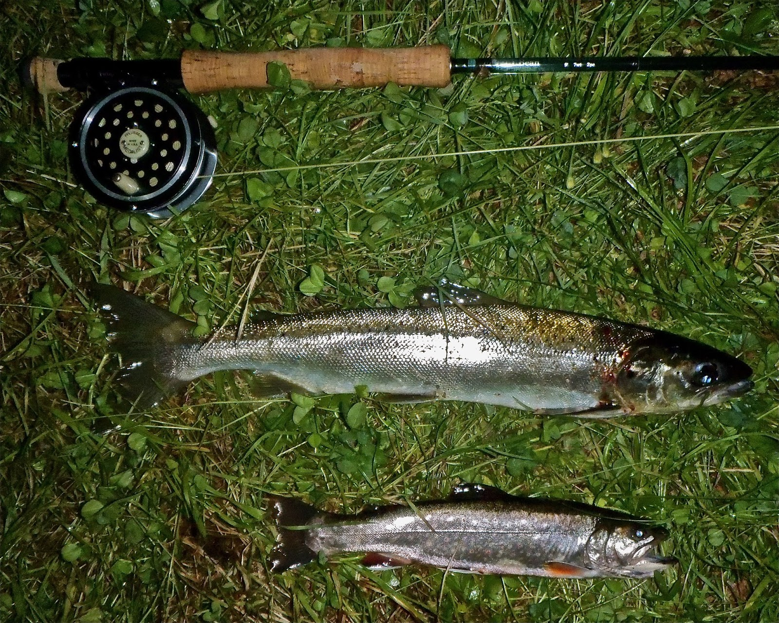 The Maine Outdoorsman: Spring Fishing in Beautiful Grand Lake Stream ...
