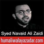 https://www.humaliwalyazadar.com/2019/02/syed-navaid-ali-zaidi-noha-ayyam-e.html