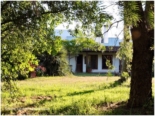 Vista desde el pequeño monte junto a la casa - Chacra Educativa Santa Lucía