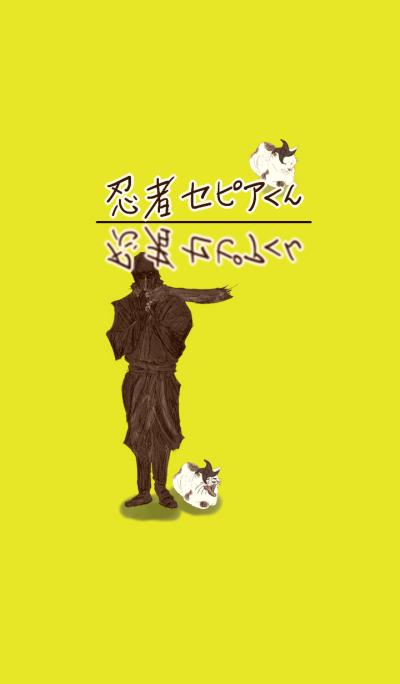 The rule of Japanese shinobi