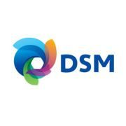 DSM Infocom Walkin Recruitment