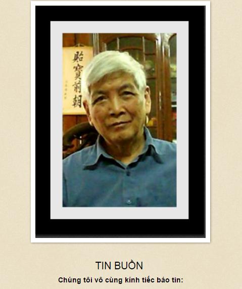 Image result for Việt Phương v