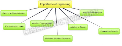 CBSE Class 12 - Business Studies - What is Organizing and its importance? (Q and A) (#cbsenotes)(#eduvictors)