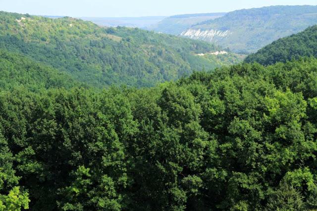 codrii moldovei