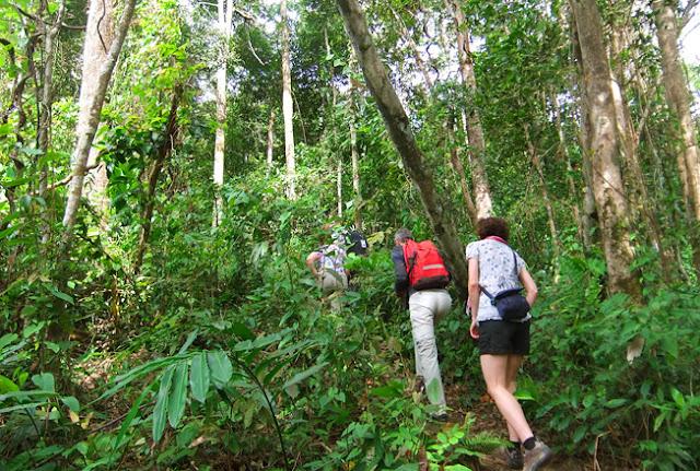 national park trekking at Bokor